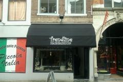 kapsalon Trendline Dordrecht 2